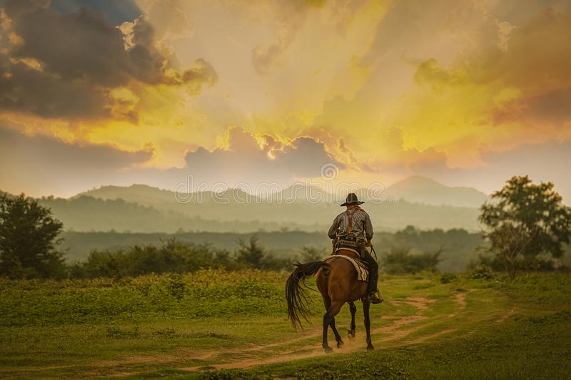 Silhouette Cowboy riding horse under beautiful sunset. Silhouette Cowboy riding a horse under beautiful sunset stock images