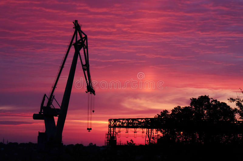 Silhouette of crane at sunrise royalty free stock photography