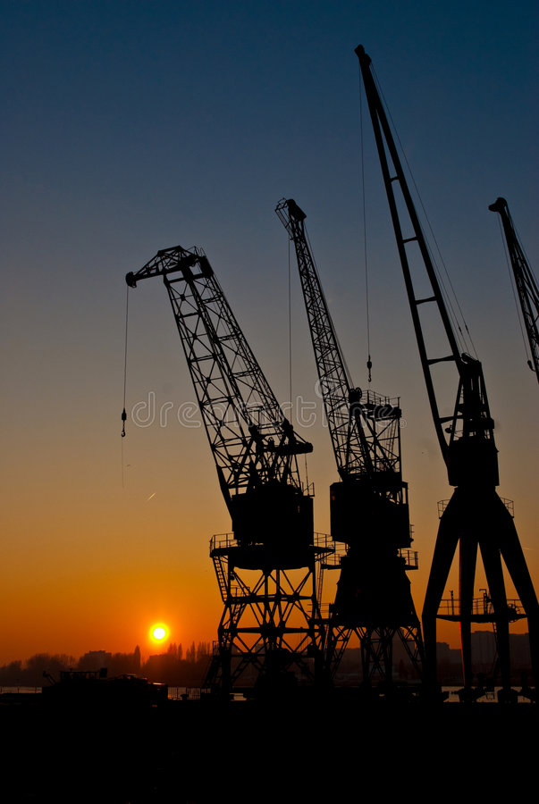 Silhouette of cranes royalty free stock photo