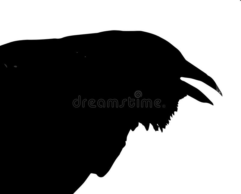 Silhouette of Crow Head royalty free stock photography