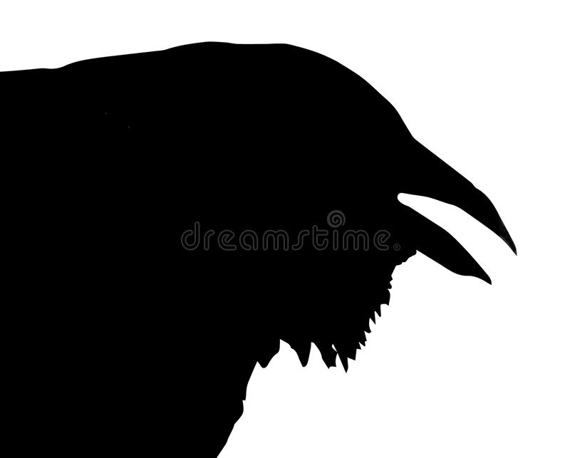 Silhouette of Crow Head royalty free stock image