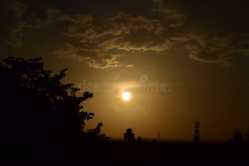 Silhouette d'arbre à l'ensemble du soleil image libre de droits