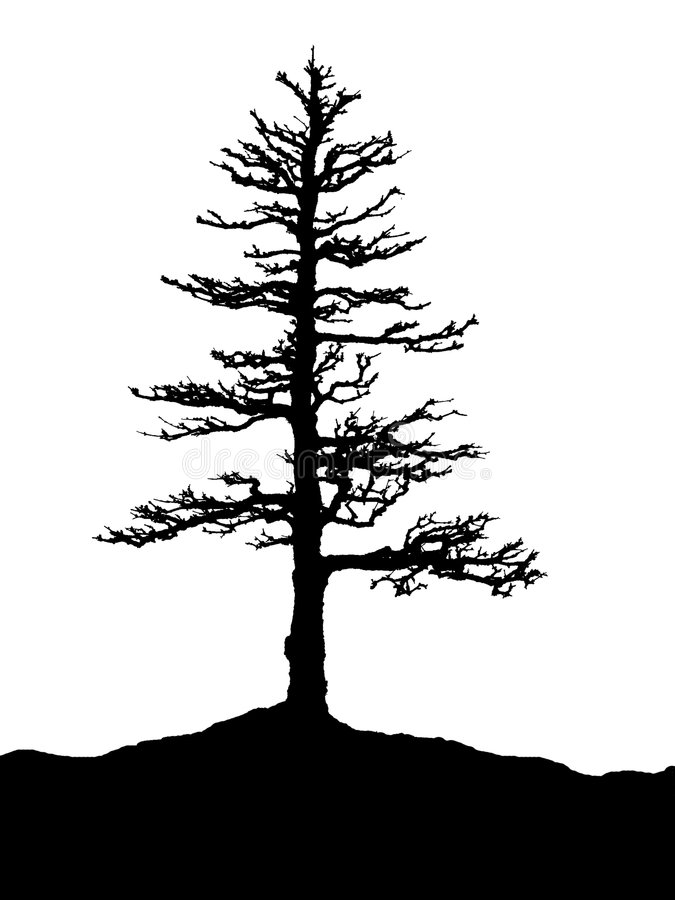 Silhouette d'arbre illustration libre de droits