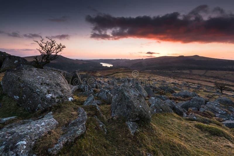 silhouette d'arbre isolé au coucher du soleil en montagnes image stock