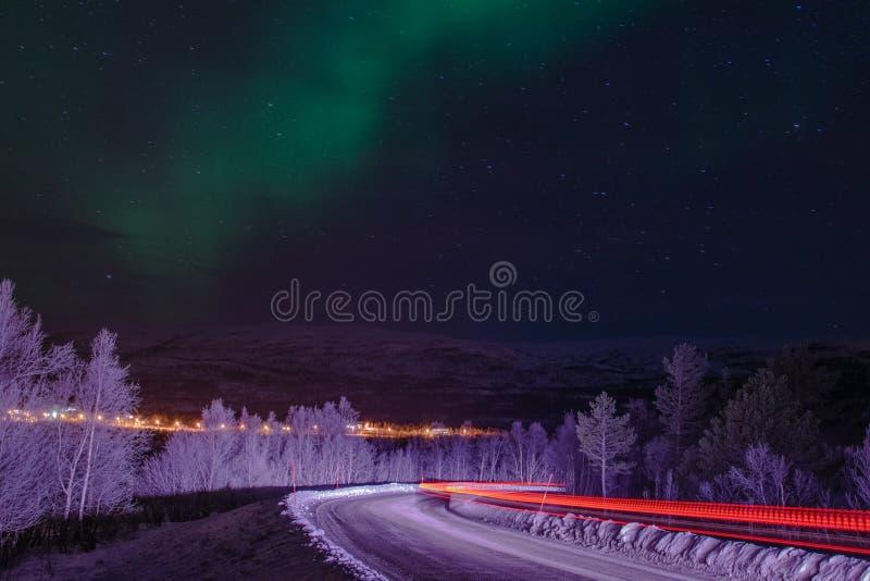 Silhouette d'arbres de lumières du nord photos libres de droits