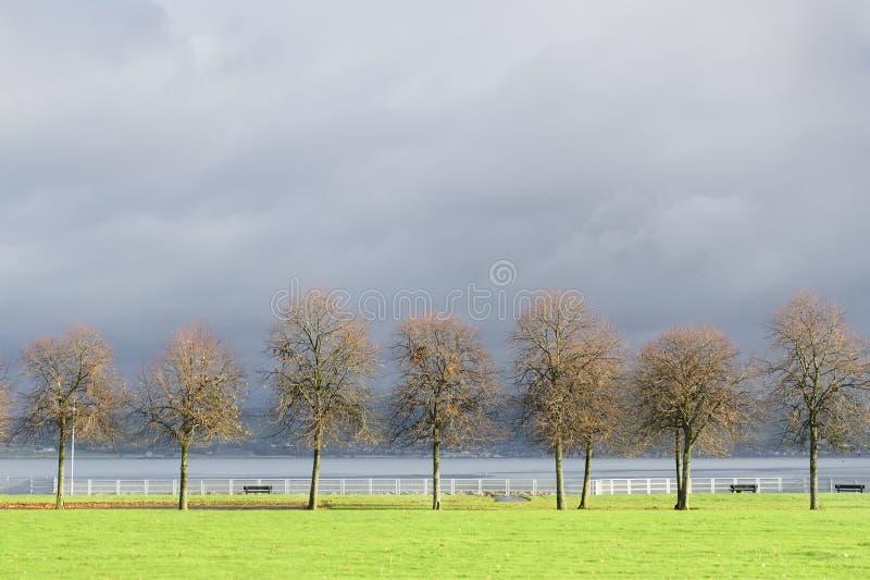 Silhouette d'arbres d'hiver sous le ciel foncé de tempête brillamment illuminé par le vert de vert du soleil dans le port Glasgow image stock
