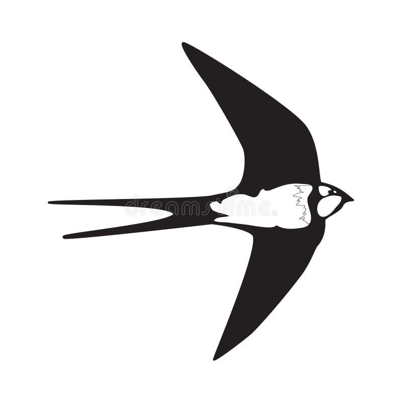Silhouette d'ensemble d'hirondelle illustration stock