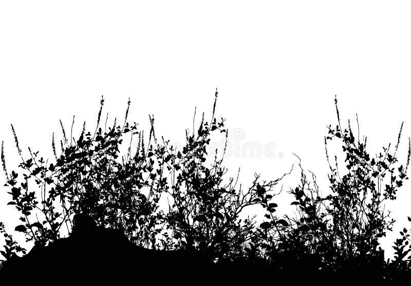 Silhouette d'herbe illustration stock