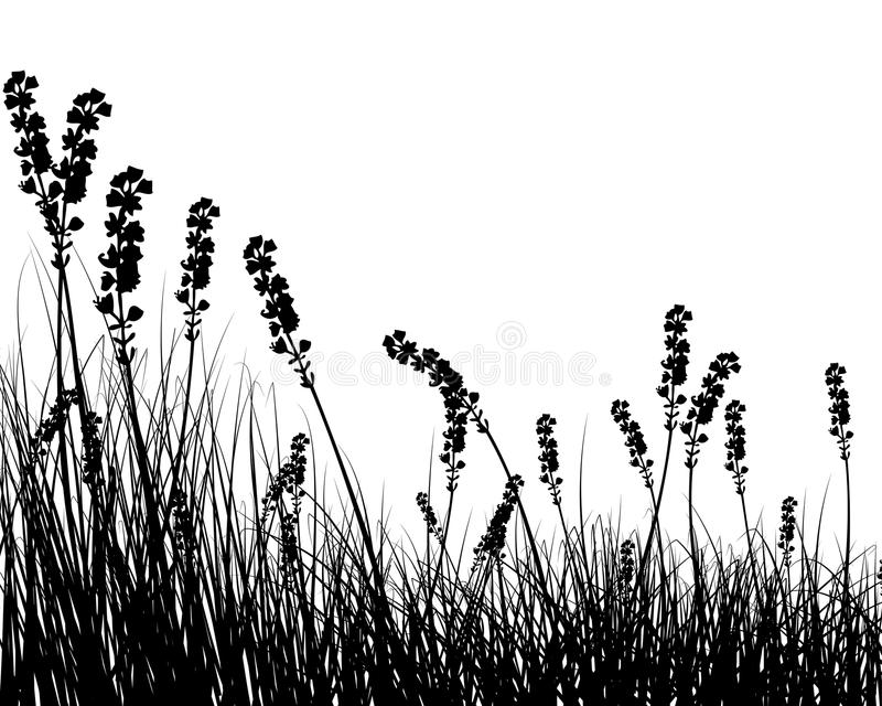 silhouette d'herbe illustration libre de droits