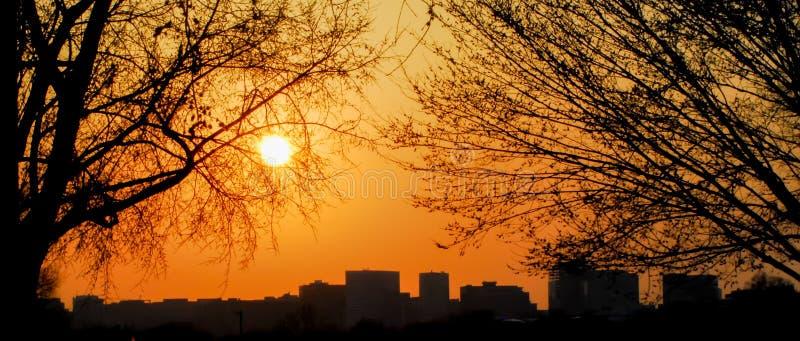 Silhouette d'horizon de DC de Washington au coucher du soleil photos stock