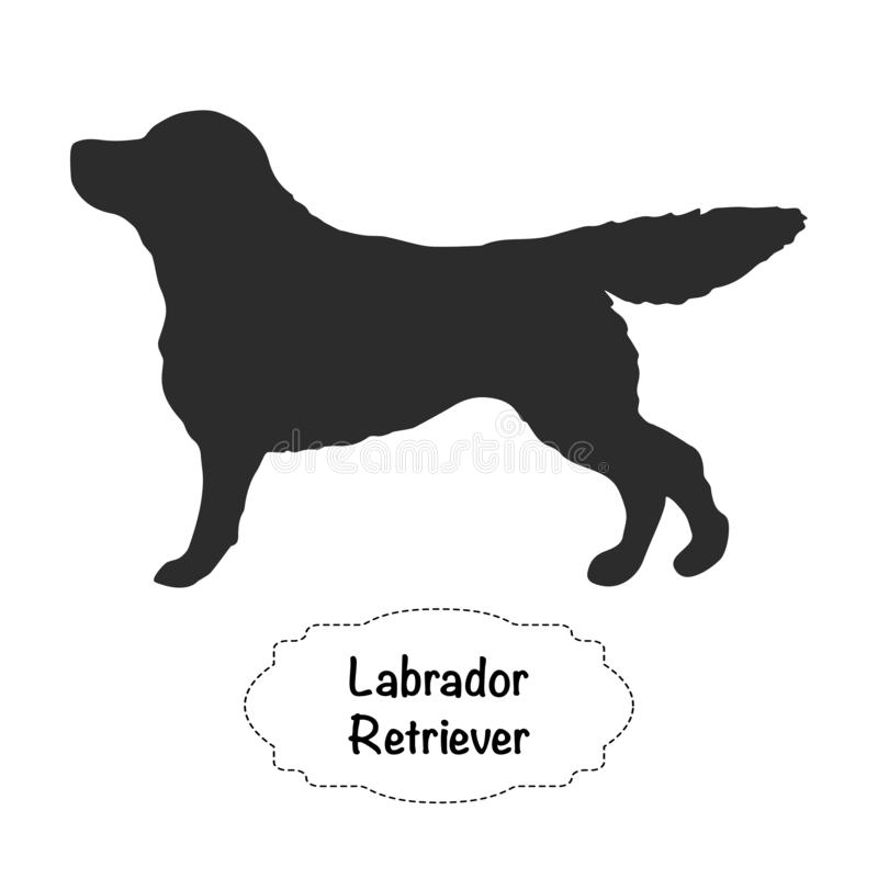 Silhouette d'isolement par vecteur de labrador retriever sur le fond blanc illustration libre de droits