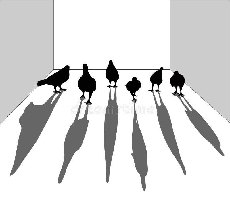 Silhouette d'oiseau Pigeon marchant sur le plancher Ressemblez aux bandes illustration stock