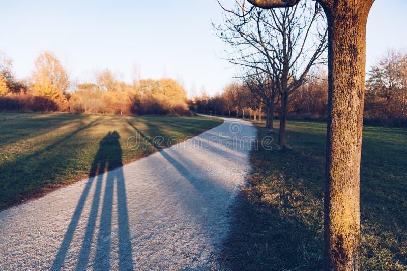 Silhouette d'ombre sur l'herbe - parc photographie stock libre de droits