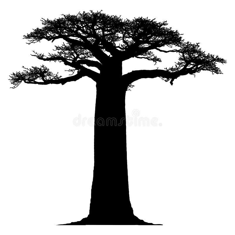 Silhouette d'un arbre de baobab illustration de vecteur