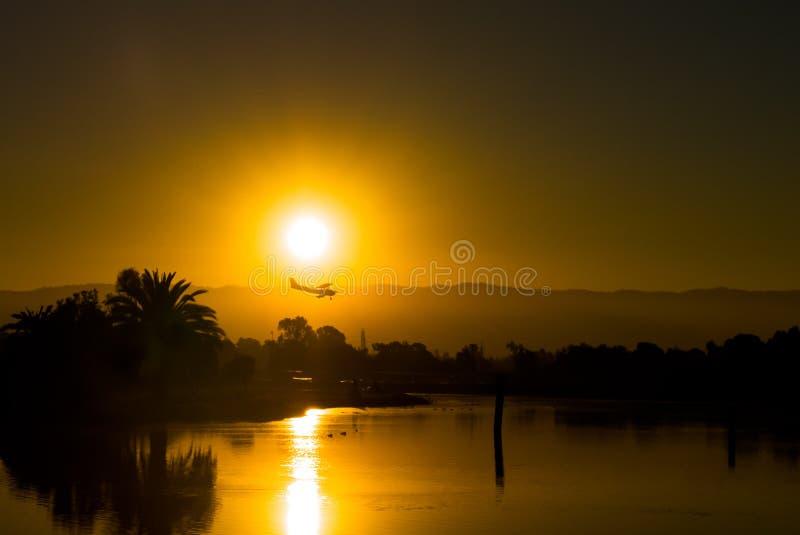 Silhouette d'un atterrissage plat contre des paumes images stock