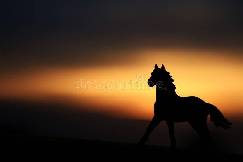 Silhouette d'un cheval photographie stock