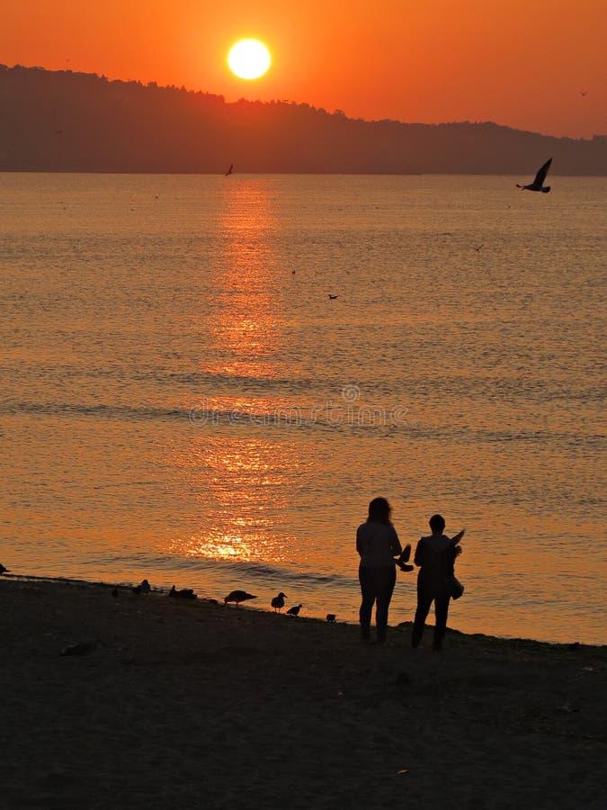 Silhouette d'un femelle et masculin au coucher du soleil image stock