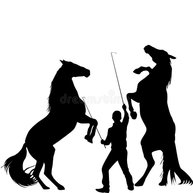 Silhouette d'un homme formant deux chevaux à l'élevage  illustration libre de droits