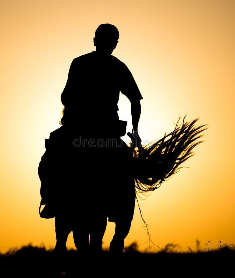 Silhouette d'un homme sur un cheval au coucher du soleil photographie stock libre de droits