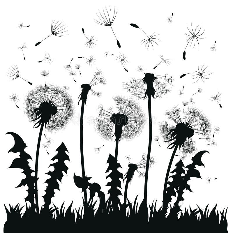 Silhouette d'un pissenlit avec des graines de vol Découpe noire d'un pissenlit Illustration noire et blanche d'une fleur illustration libre de droits