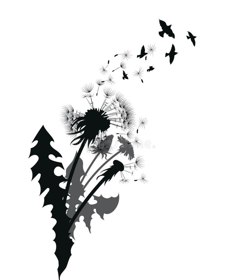 Silhouette d'un pissenlit avec des graines de vol Découpe noire d'un pissenlit Illustration noire et blanche d'une fleur illustration stock