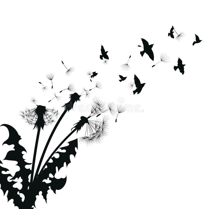Silhouette d'un pissenlit avec des graines de vol Découpe noire d'un pissenlit Illustration noire et blanche d'une fleur illustration de vecteur