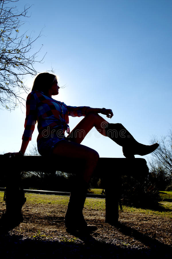 Silhouette d'une cow-girl photographie stock libre de droits
