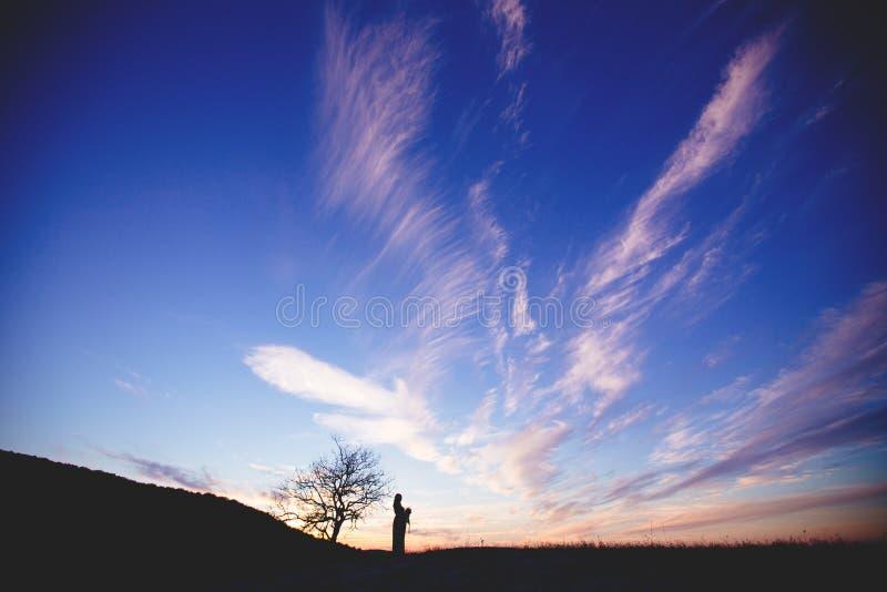 Silhouette d'une femme enceinte contre le ciel images libres de droits
