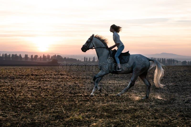 Silhouette d'une fille et d'un cheval au coucher du soleil, se précipitant au-dessus du champ images stock