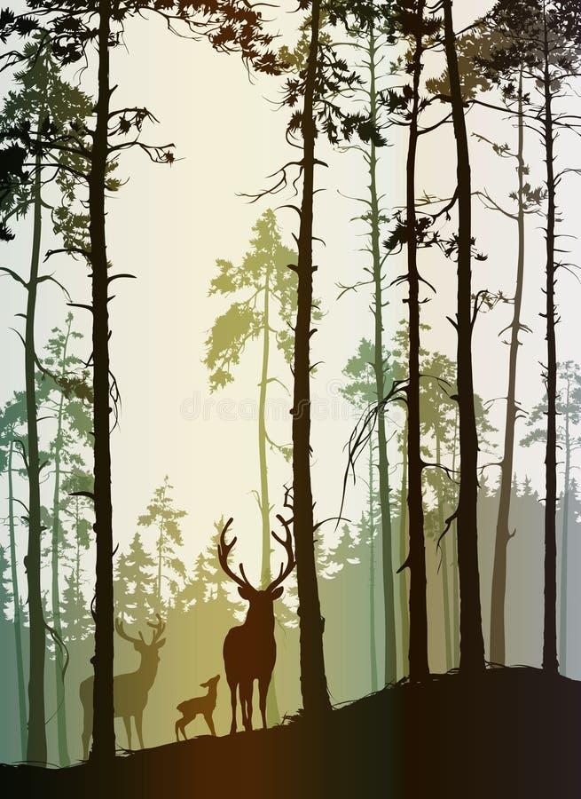 Silhouette d'une forêt de pin avec une famille des cerfs communs illustration libre de droits