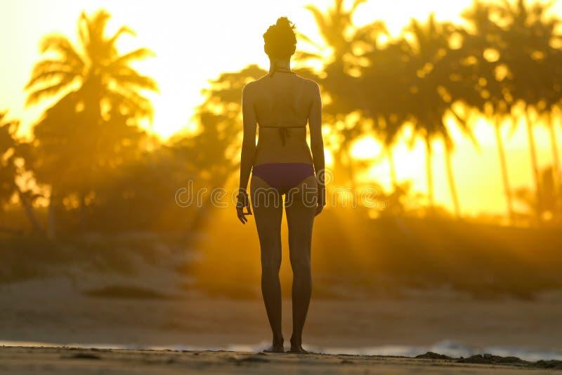 Silhouette d'une jeune femme se tenant sur la plage au coucher du soleil images libres de droits