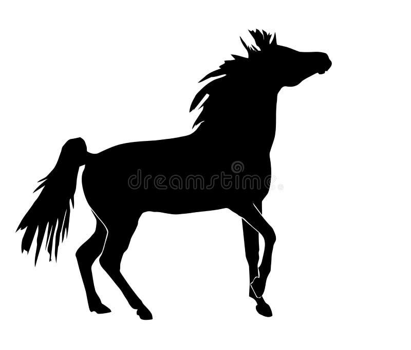 Silhouette de cheval illustration de vecteur