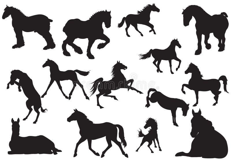 Silhouette de cheval. illustration stock