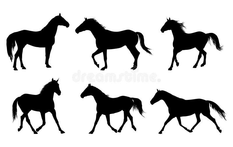 silhouette de cheval illustration libre de droits