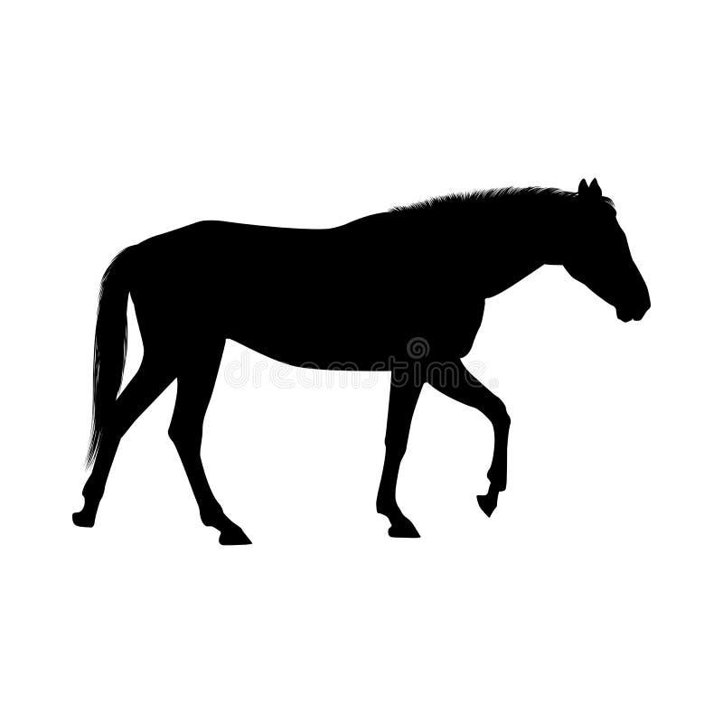 Silhouette de cheval illustration stock