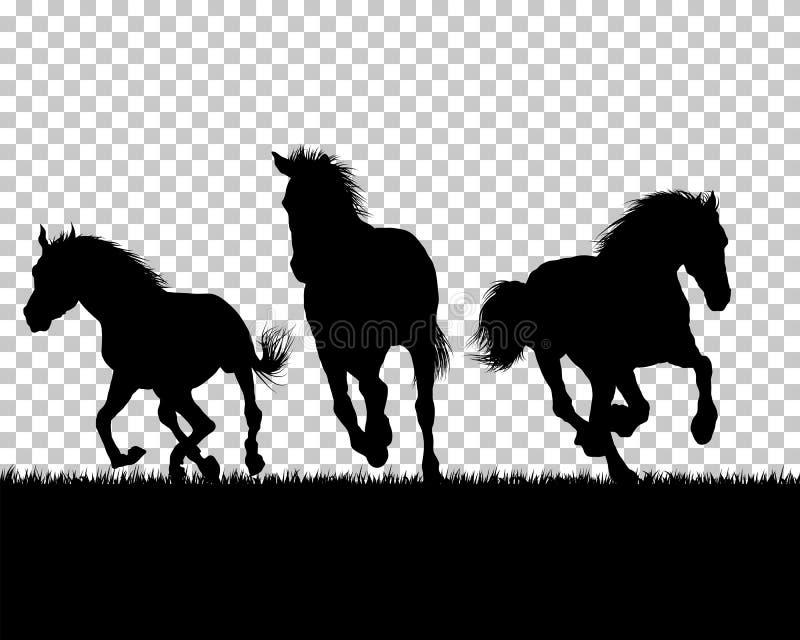 Silhouette de cheval sur le fond d'herbe illustration de vecteur