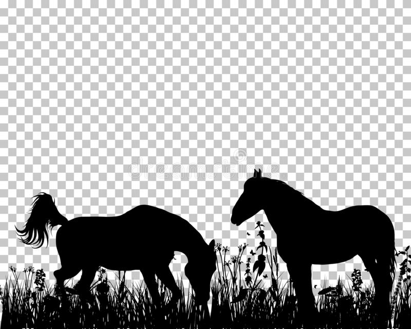 Silhouette de cheval sur le fond d'herbe illustration libre de droits