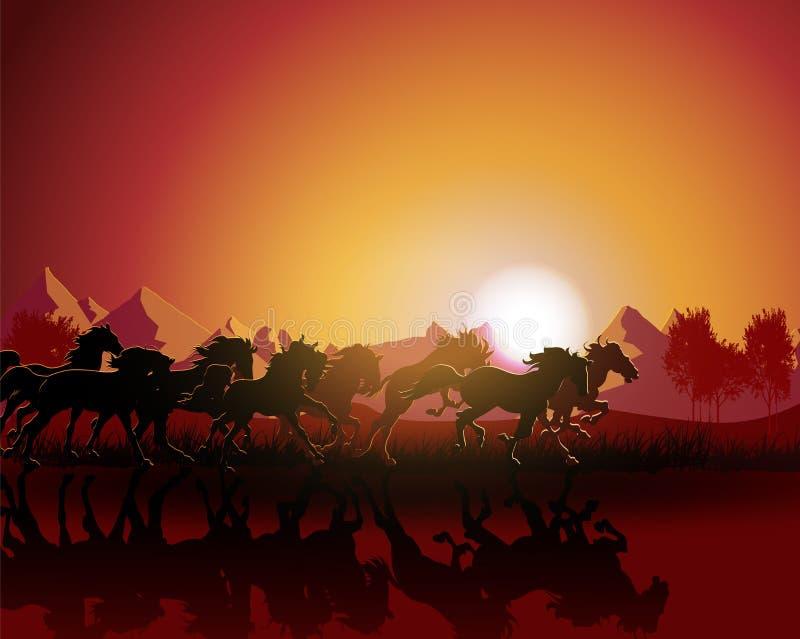 Silhouette de cheval sur le fond de coucher du soleil. illustration libre de droits