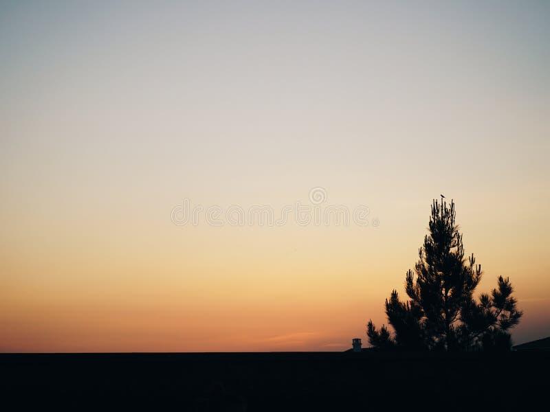 Silhouette de coucher du soleil image libre de droits