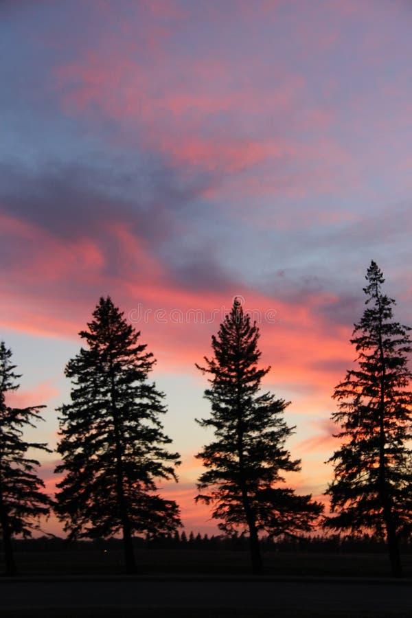 Silhouette de coucher du soleil au crépuscule, Brandon, Manitoba photographie stock libre de droits