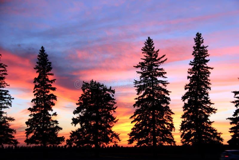 Silhouette de coucher du soleil, Brandon, Manitoba image libre de droits