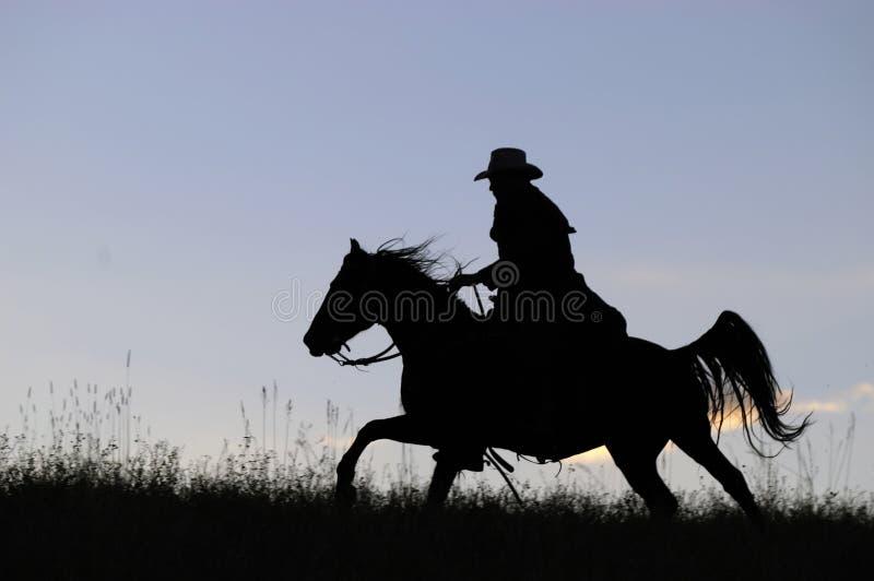 Silhouette de cowboy photographie stock
