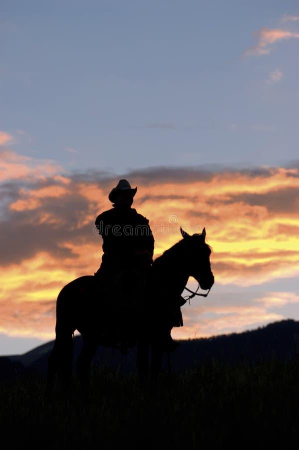 Silhouette de cowboy photos stock