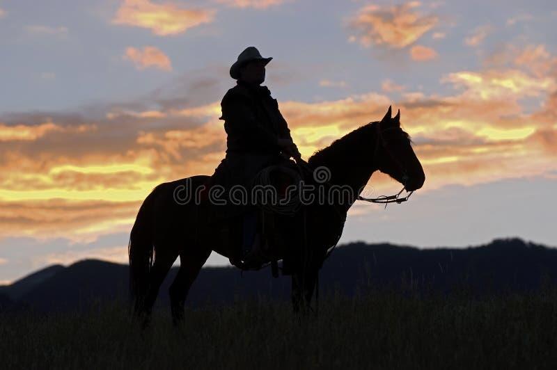 Silhouette de cowboy photo libre de droits