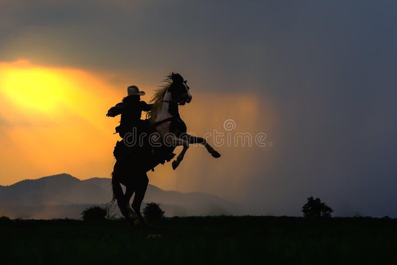 Silhouette de cowboy sur le cheval pendant le coucher du soleil gentil photo stock