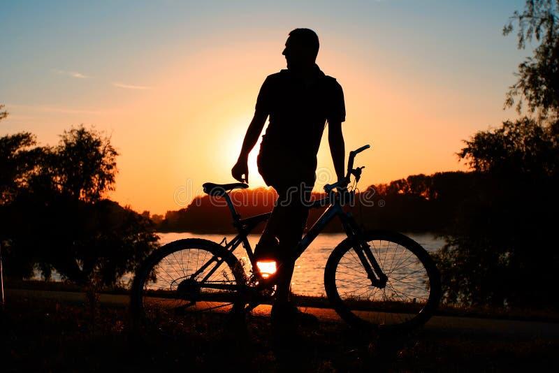 Silhouette de cycliste de montagne image stock