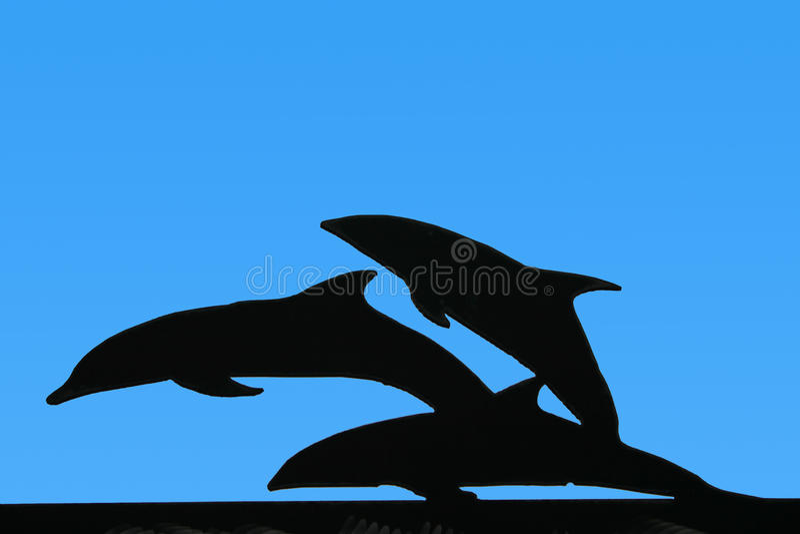 Silhouette de dauphin photos stock