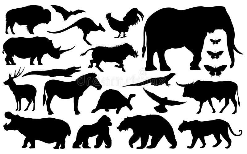 Silhouette de divers animaux images stock
