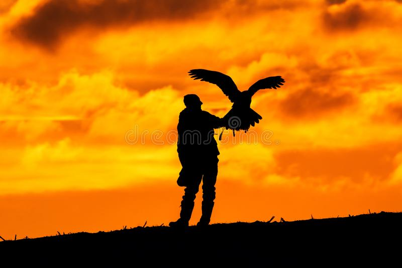 Silhouette de fauconnier avec l'aigle Chasse dans la nature photo stock