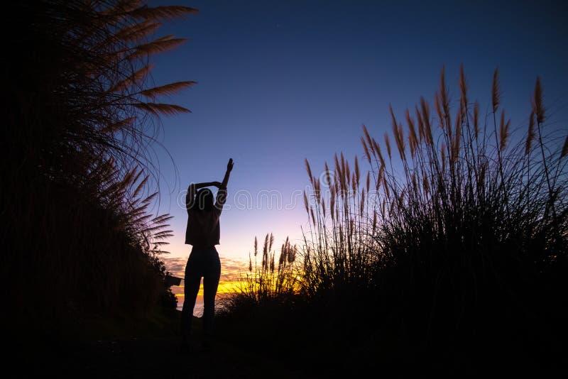 Silhouette de fille posant et s'étendant autour du fond naturel vibrant image libre de droits